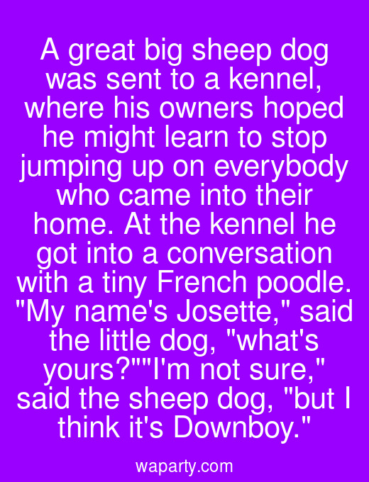 A great big sheep dog was sent to a kennel, where his owners hoped he might learn to stop jumping up on everybody who came into their home. At the kennel he got into a conversation with a tiny French poodle. My names Josette, said the little dog, whats yours?Im not sure, said the sheep dog, but I think its Downboy.