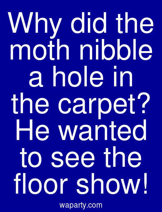 Why did the moth nibble a hole in the carpet? He wanted to see the floor show!