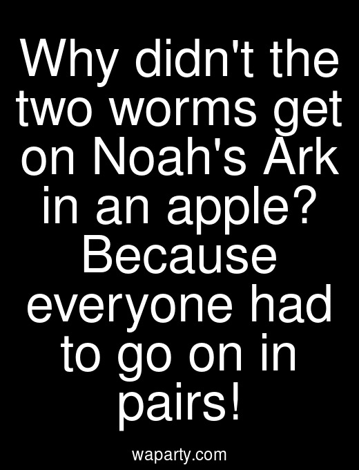 Why didnt the two worms get on Noahs Ark in an apple? Because everyone had to go on in pairs!