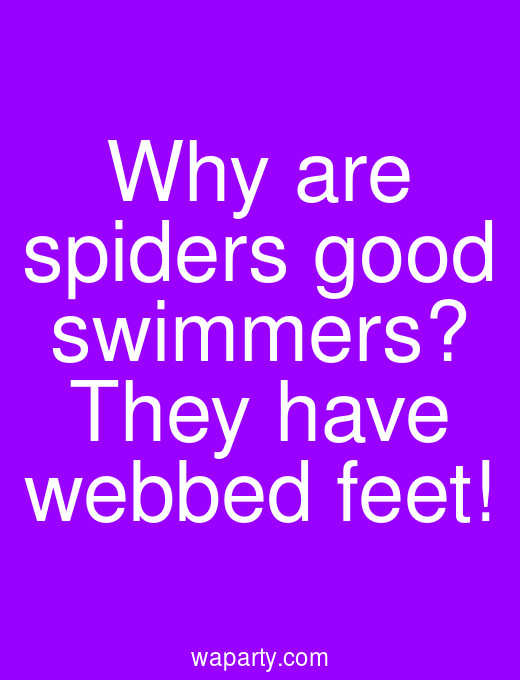 Why are spiders good swimmers? They have webbed feet!
