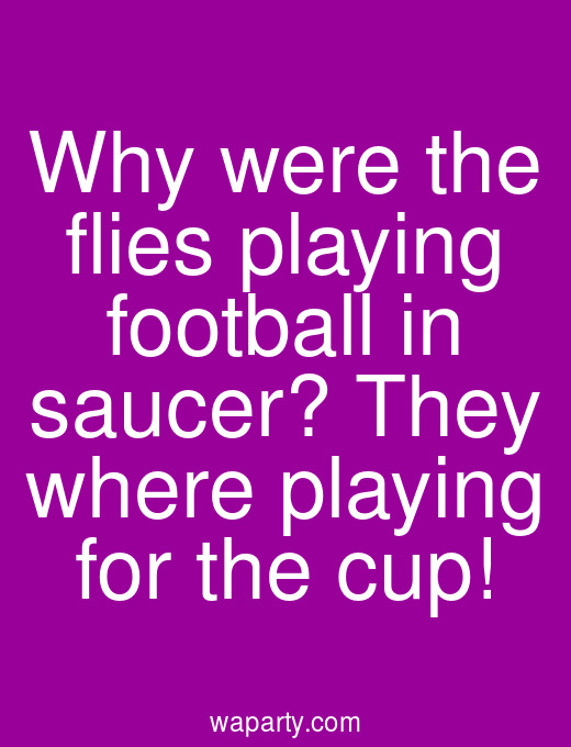 Why were the flies playing football in saucer? They where playing for the cup!