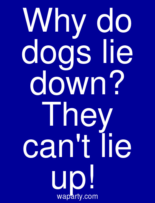Why do dogs lie down? They cant lie up!