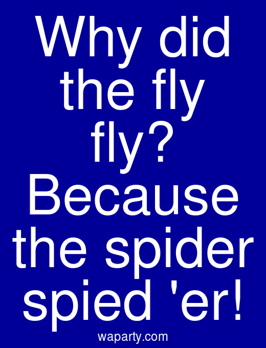 Why did the fly fly? Because the spider spied er!