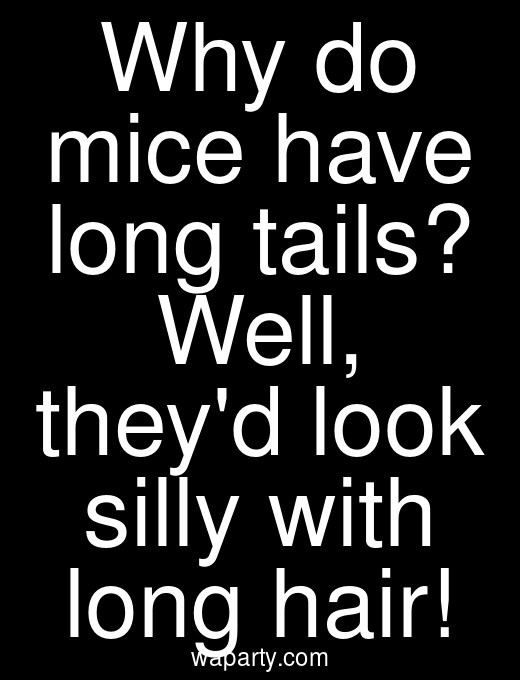 Why do mice have long tails? Well, theyd look silly with long hair!