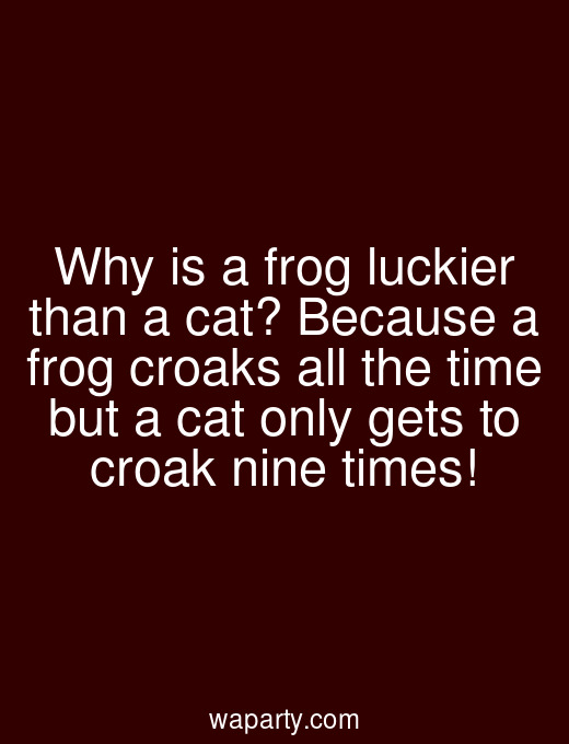 Why is a frog luckier than a cat? Because a frog croaks all the time but a cat only gets to croak nine times!