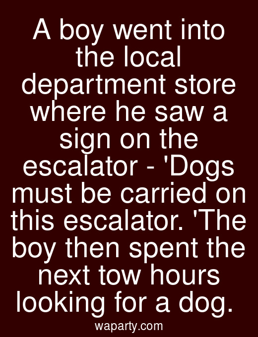 A boy went into the local department store where he saw a sign on the escalator - Dogs must be carried on this escalator. The boy then spent the next tow hours looking for a dog.